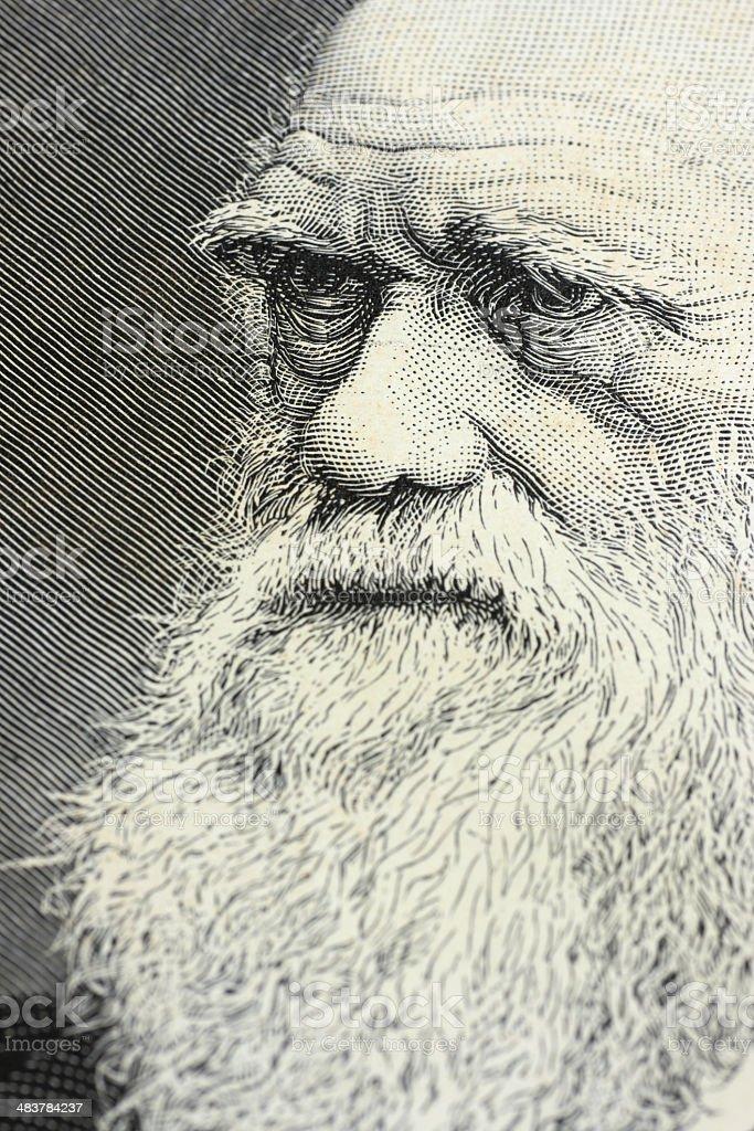 Charles Darwin portrait engraving royalty-free stock photo