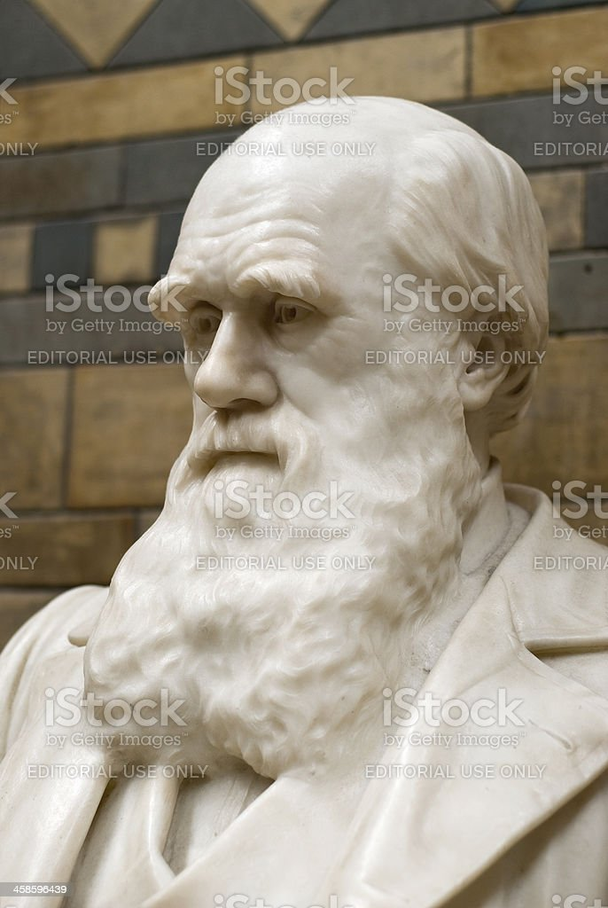 Charles Darwin statue, Natural History Museum, London royalty-free stock photo