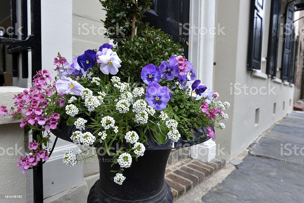Charleston Street Scene royalty-free stock photo