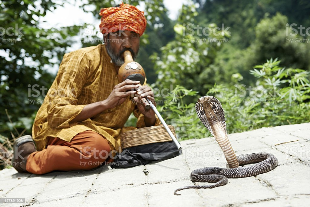charmer of snake in India stock photo