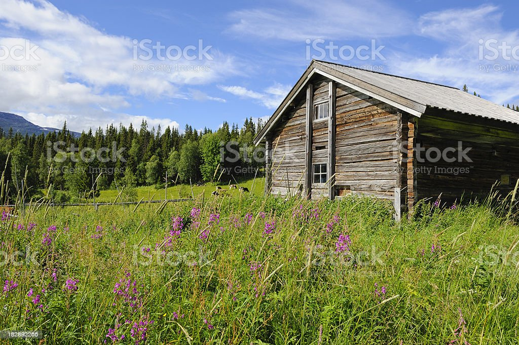 Charming old barn in northern Sweden stock photo