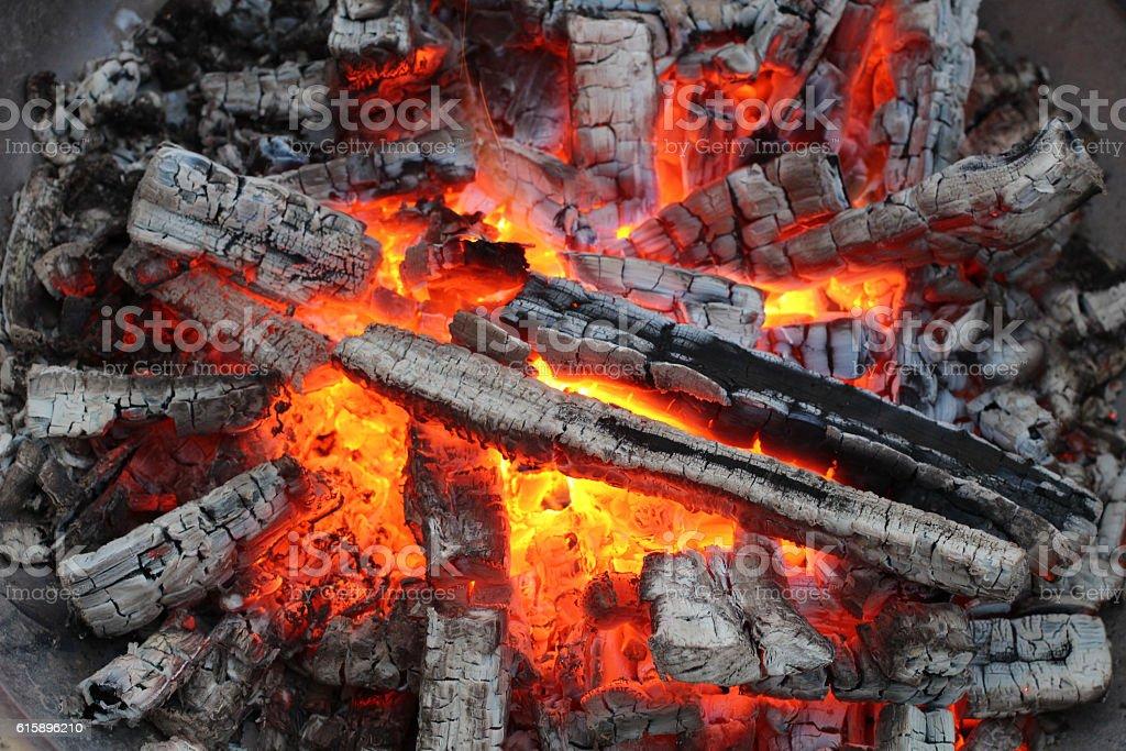 Charred wood stock photo