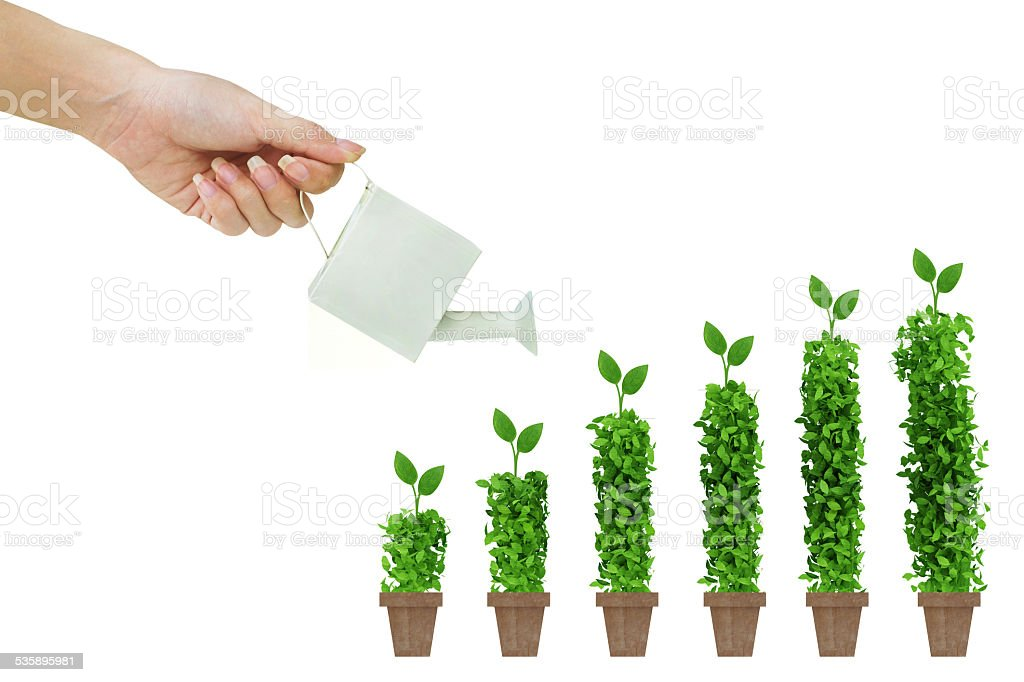 chart up trees on white background stock photo