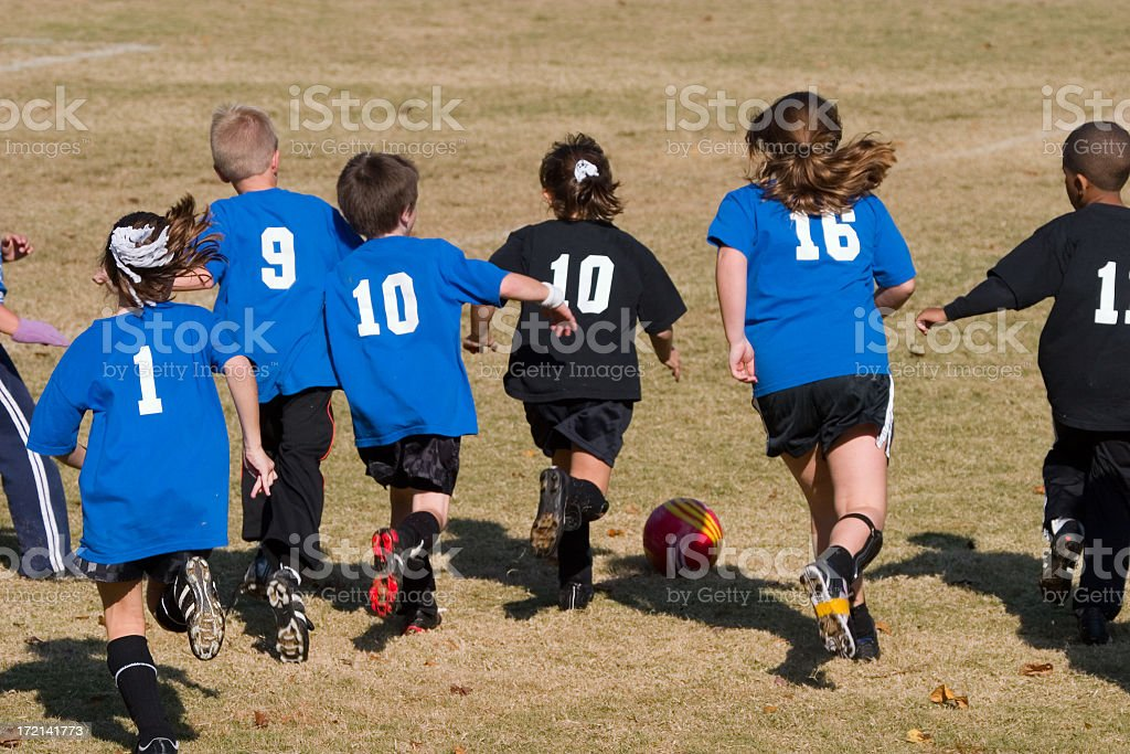 Chasing the Soccer Ball royalty-free stock photo