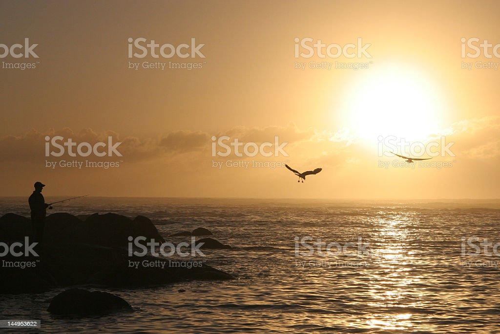 Chasing el sol foto de stock libre de derechos