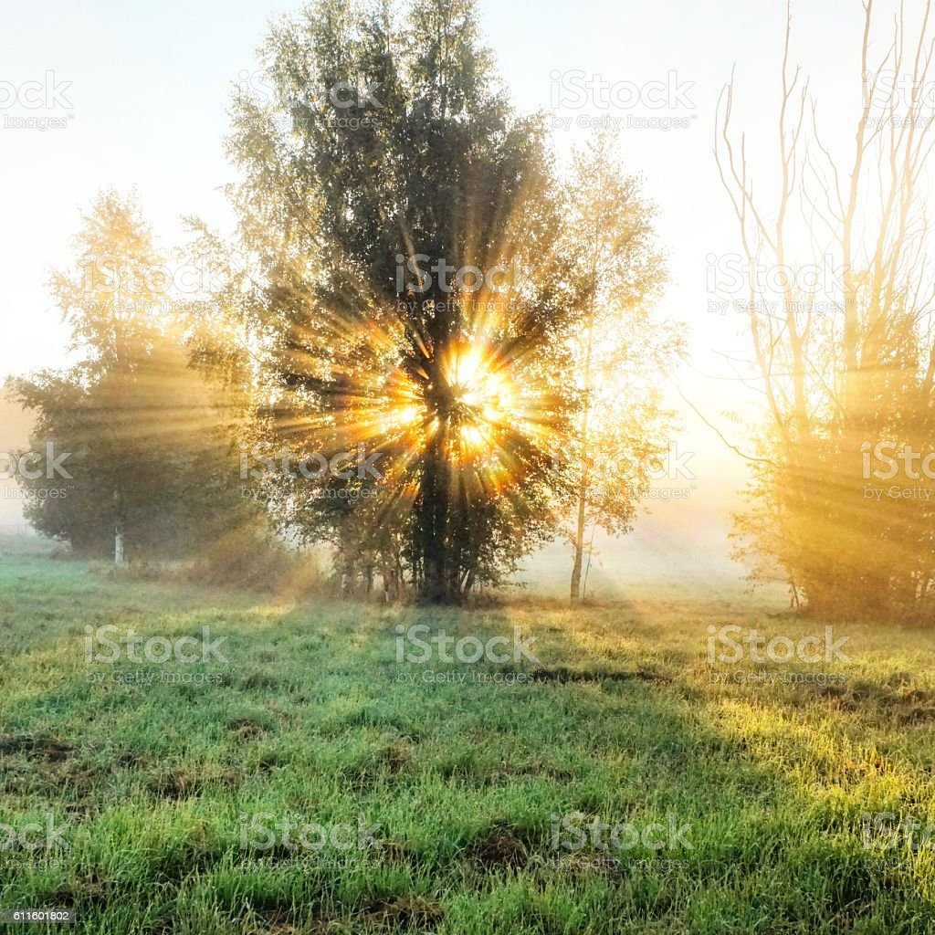 Chasing the Sunrise stock photo
