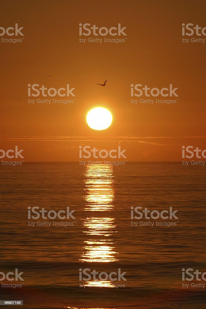chasing the sunset royalty-free stock photo
