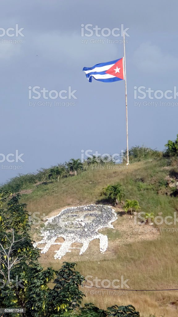 Che guevara picture in stone with half-mast flag stock photo