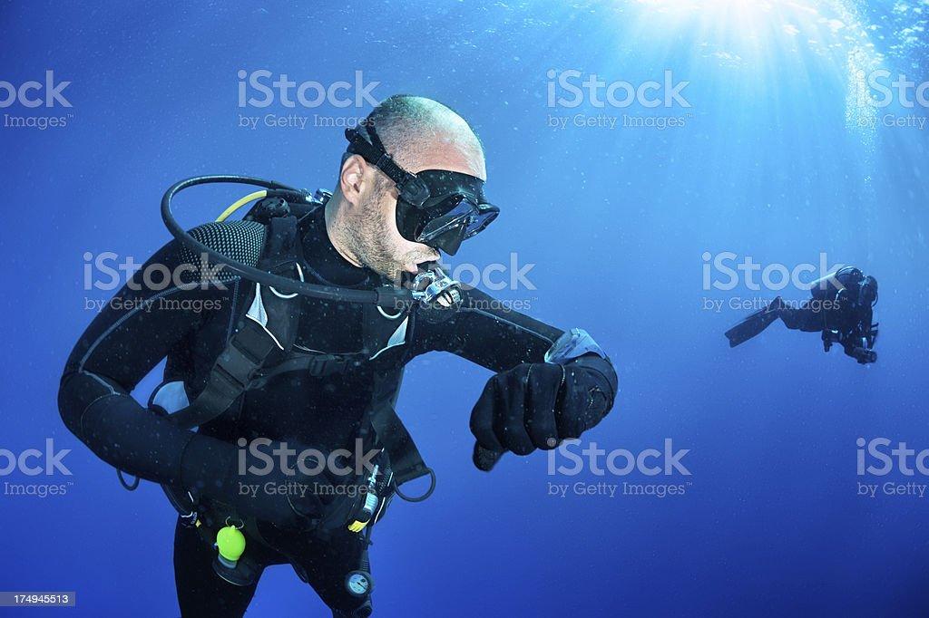 Check dive stock photo