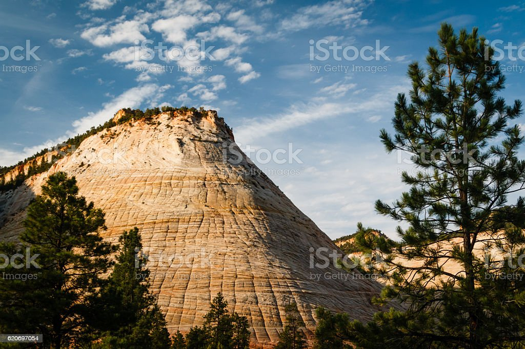 Checkerboard Mesa in Zion National Park stock photo