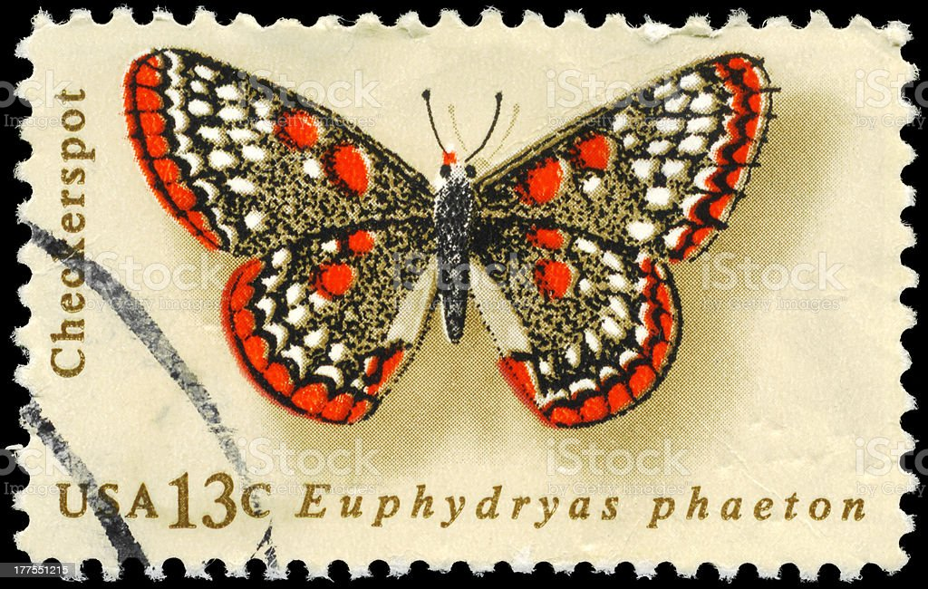 Checkerspot royalty-free stock photo