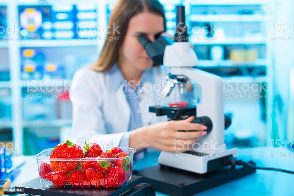 checking food Strawberries, on the content herbicides and pestic stock photo