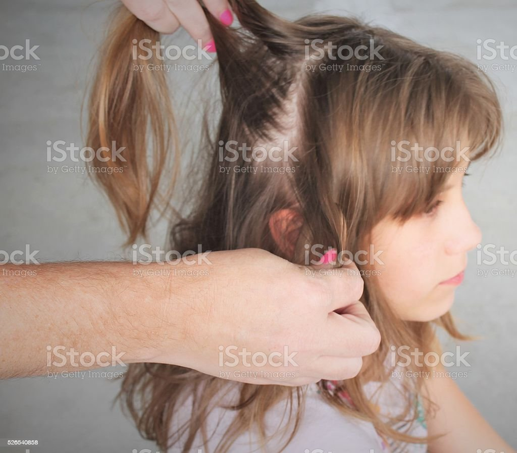 Checking for Lice stock photo