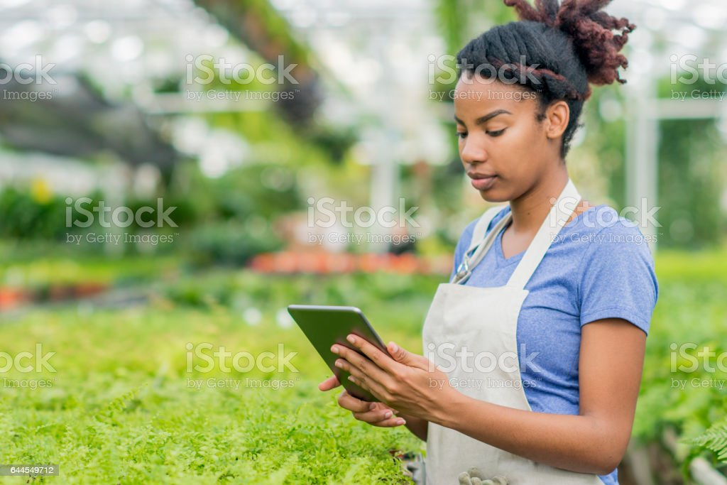 Checking Inventory stock photo
