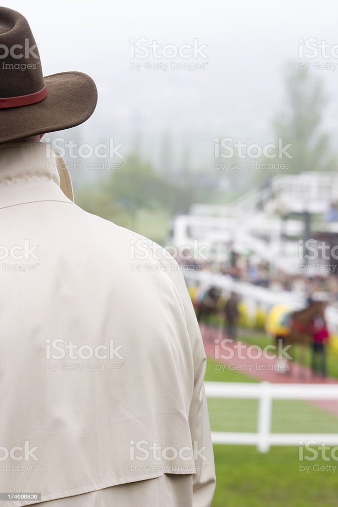 Checking Racehorses in the Paddock royalty-free stock photo