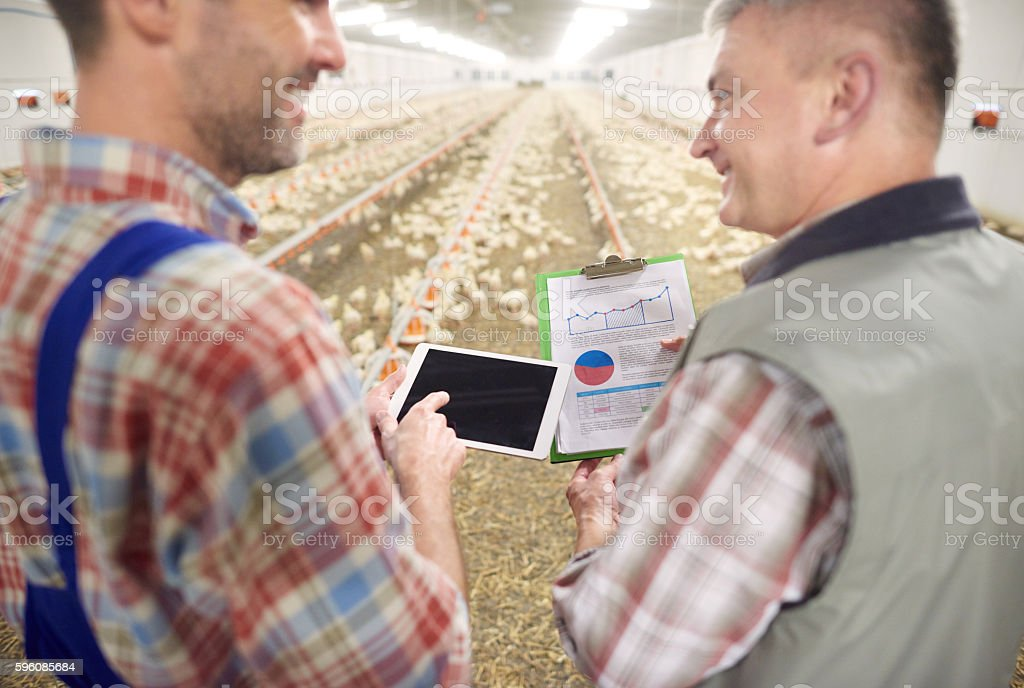 Checking recent data of the business stock photo