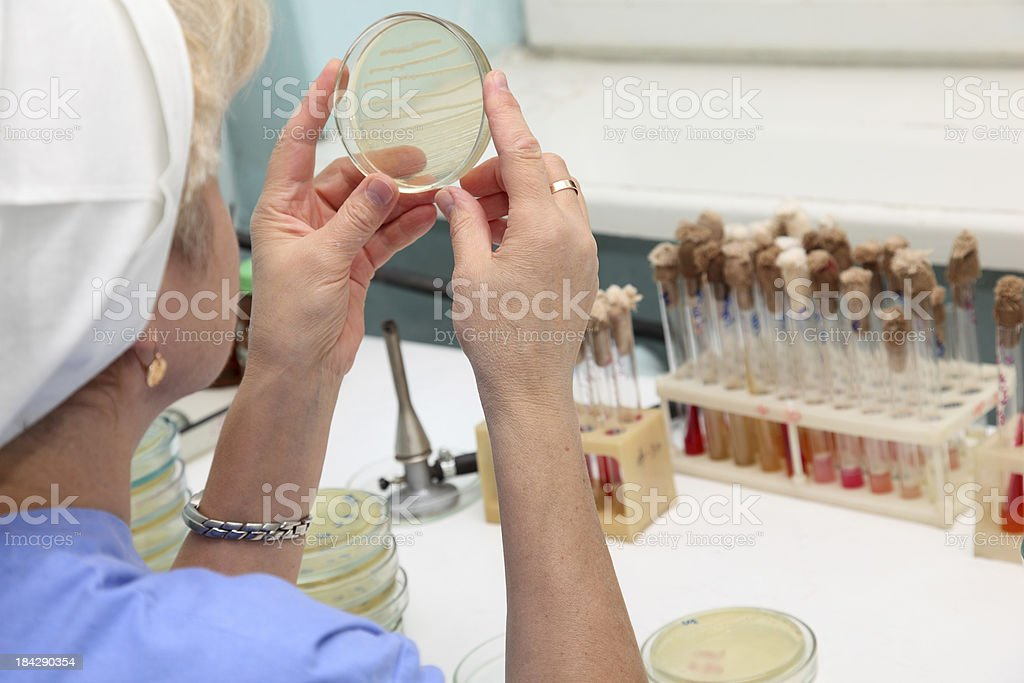 Checking results in blood laboratory stock photo