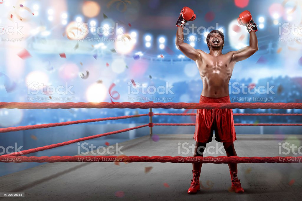 Cheerful asian young boxer is celebrating his winning stock photo