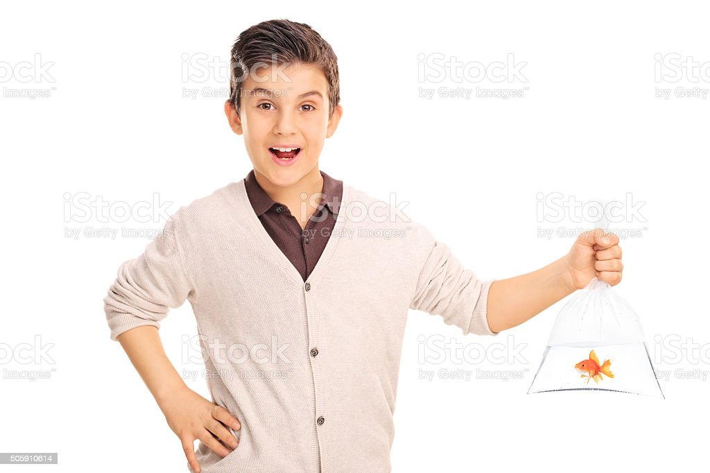 Cheerful boy holding a goldfish in a plastic bag stock photo