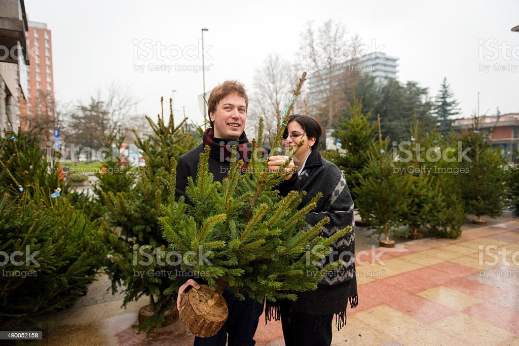 Cheerful Couple Taking Christmas Tree Home, Slovenia, Europe stock photo