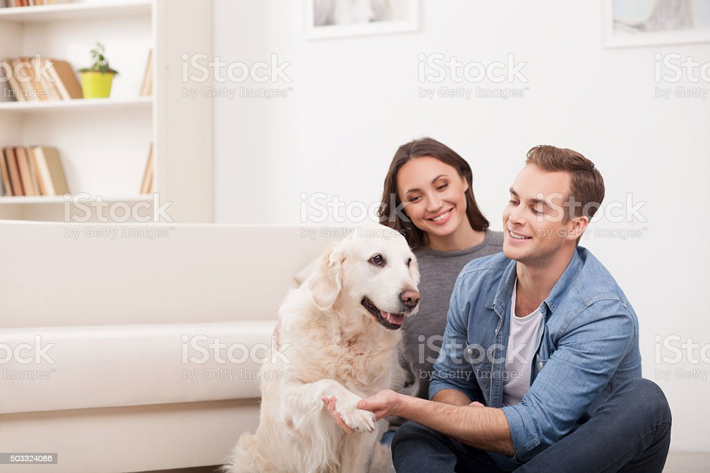 Cheerful family is playing with pretty puppy stock photo