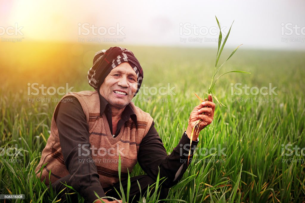 Cheerful Farmer Sitting in the Green field stock photo