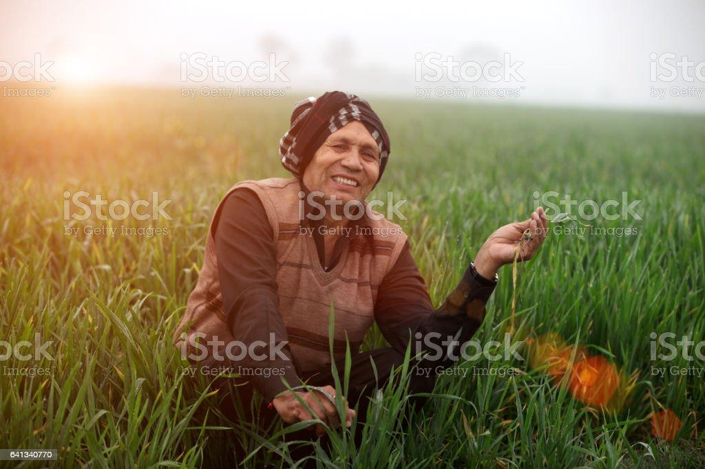 Cheerful Farmer Sitting in the Green field stock photo
