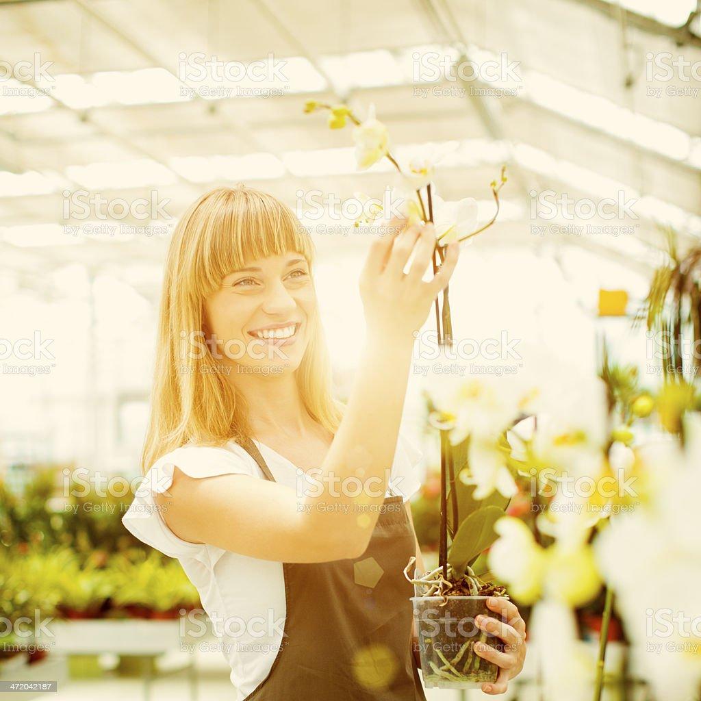 Cheerful Female Florist Nursery Flowers. stock photo