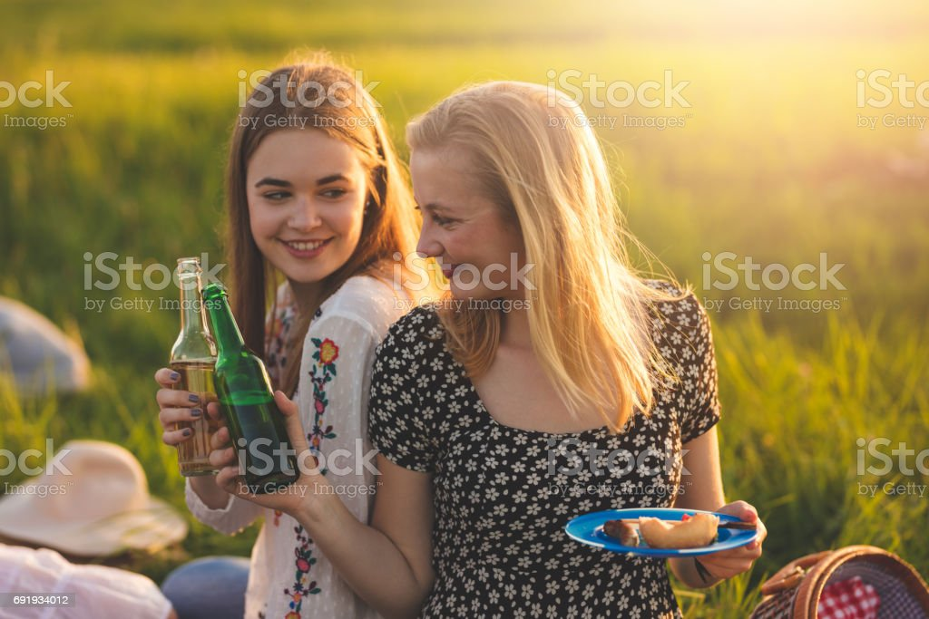 Cheerful female friends toasting beer bottles during picnic against clear sky stock photo