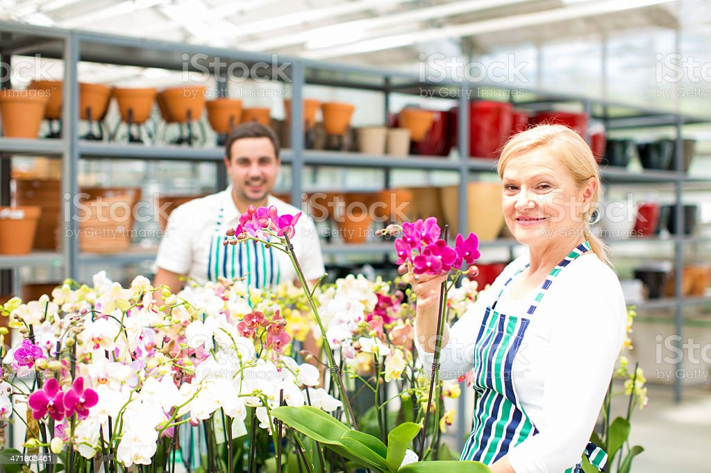 Cheerful Florists Working at Garden Center. royalty-free stock photo