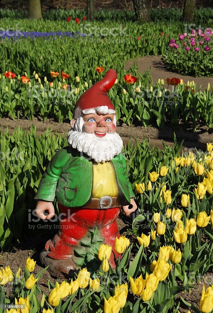 Cheerful garden gnome royalty-free stock photo