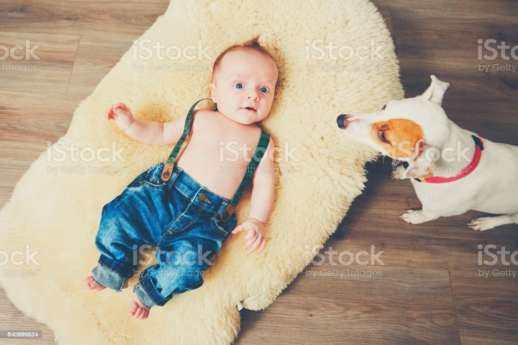 Cheerful little boy at home stock photo