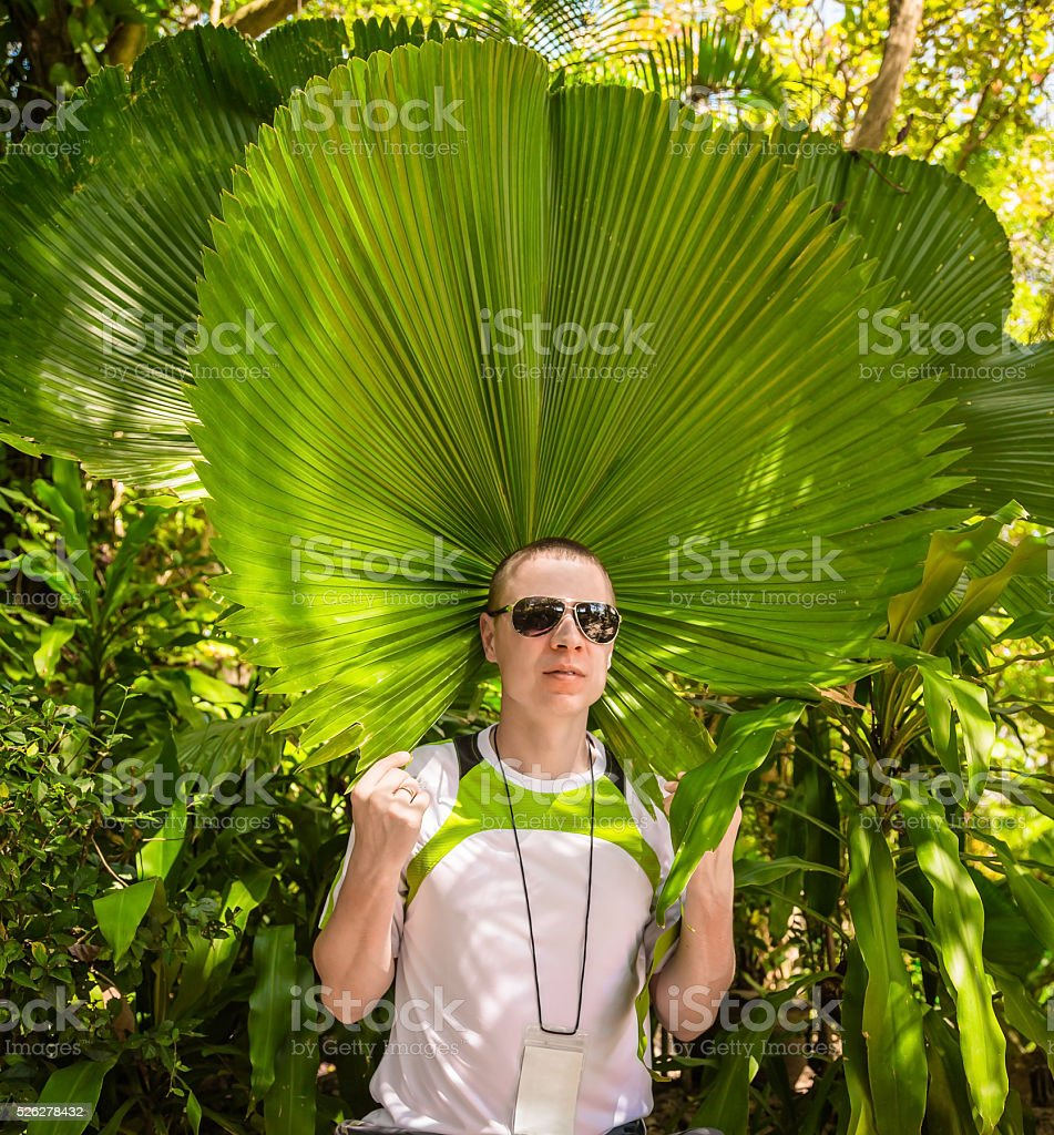 Cheerful man with palm trees stock photo