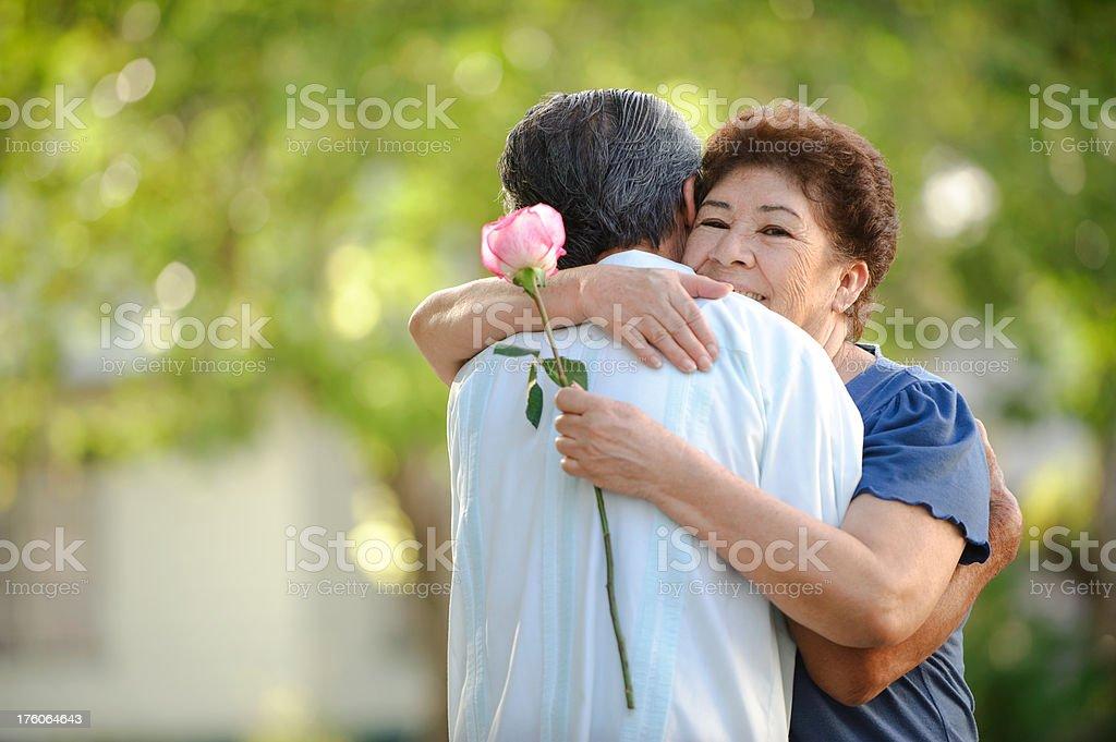 Cheerful senior couple royalty-free stock photo