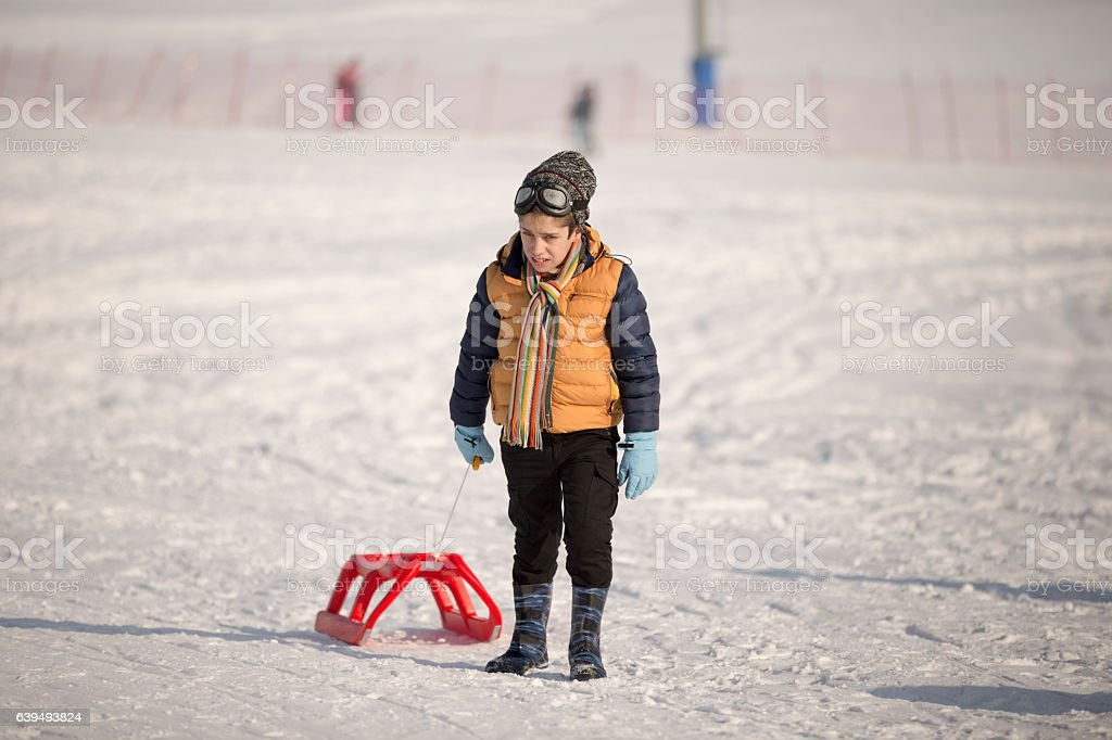 Cheerful sledding and having fun on snow stock photo
