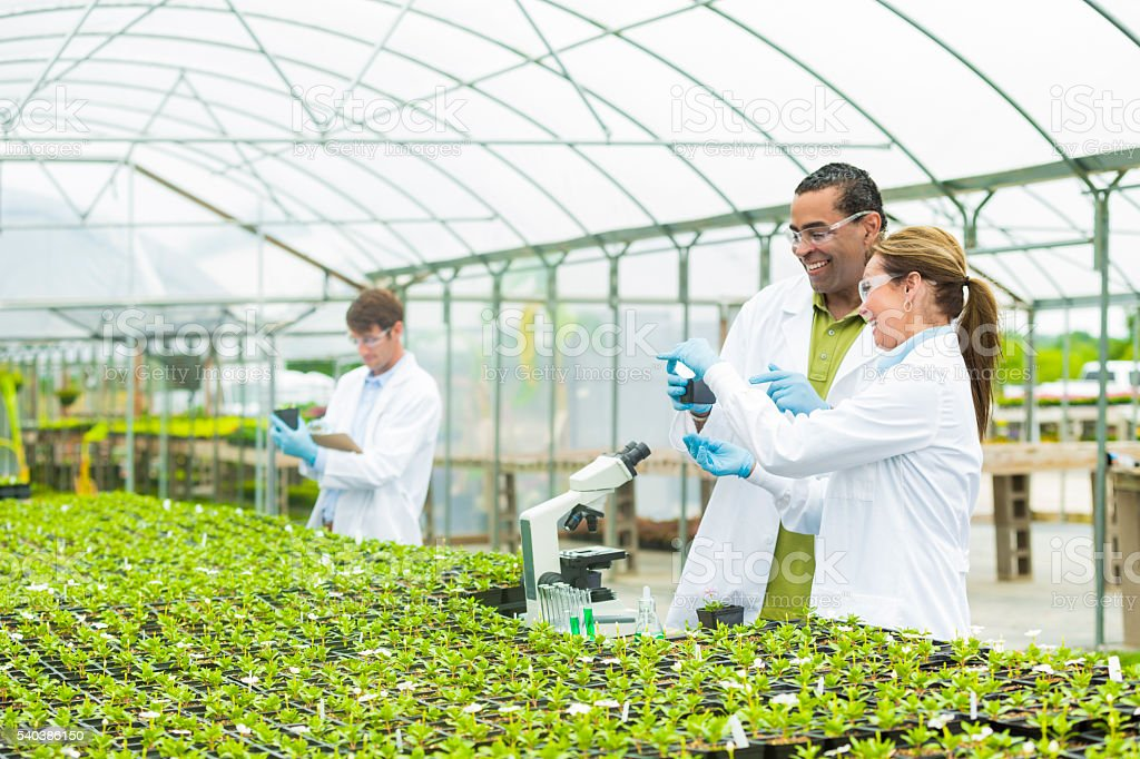 Cheerful team of scientists researching plants together stock photo