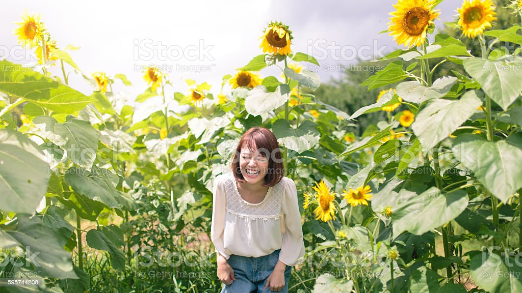 Cheerful young woman laughing in sunflower field stock photo