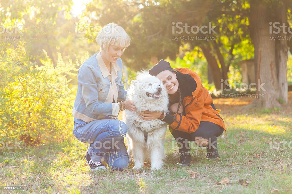 Cheerful young women caressing a dog in park stock photo