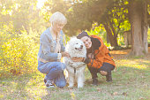 Cheerful young women caressing a dog in park