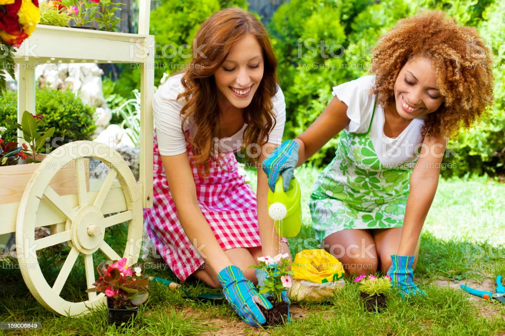 Cheerful Young Women Gardening royalty-free stock photo