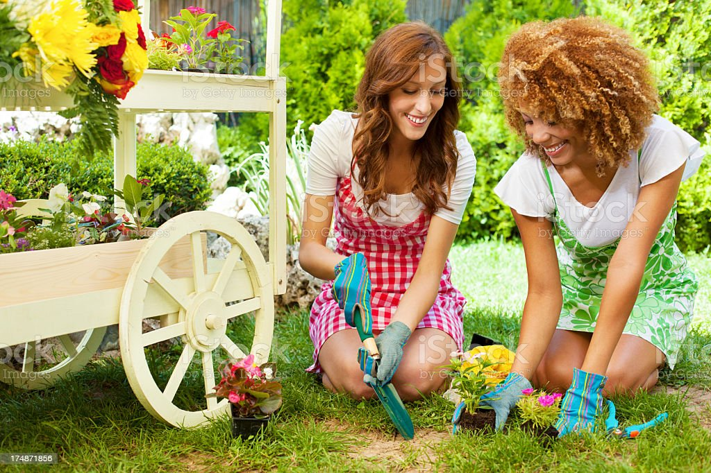 Cheerful young Women Gardening. royalty-free stock photo