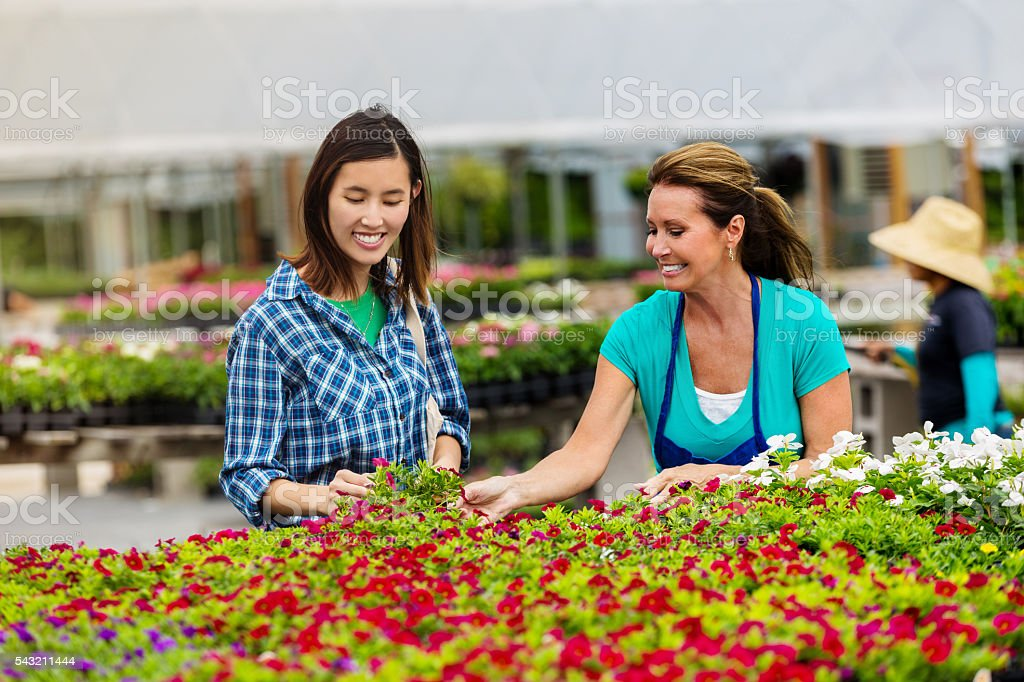 Cheerfull woman shopping for potted flowers at garden center stock photo