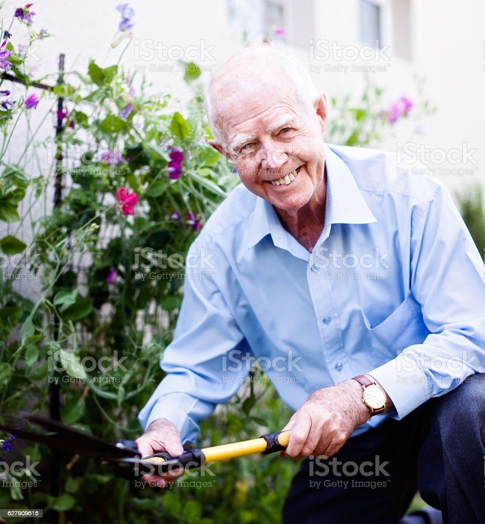 Cheerfully active 90-year-old man smilingly works in his garden stock photo