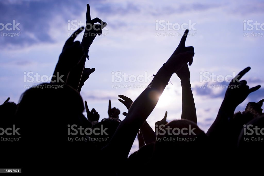 Cheering Crowd royalty-free stock photo
