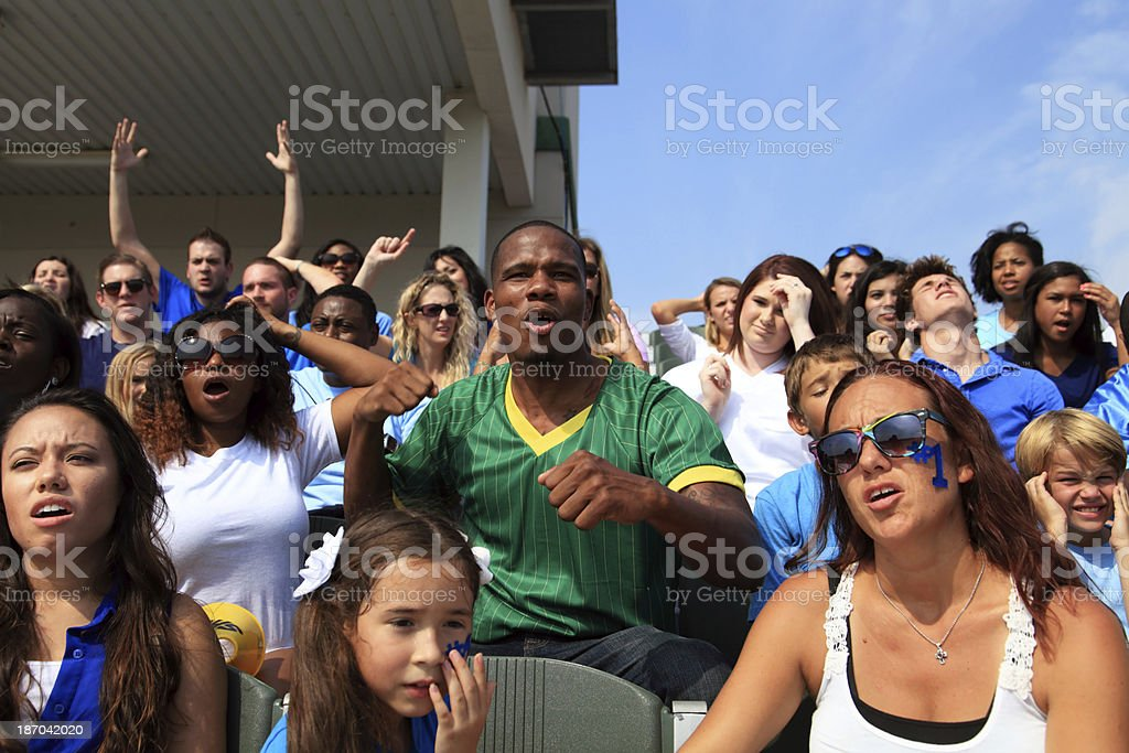 Cheering Fan royalty-free stock photo
