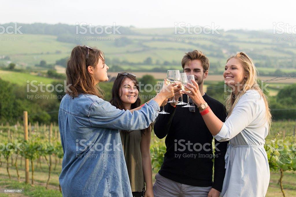 Cheers to the vines stock photo