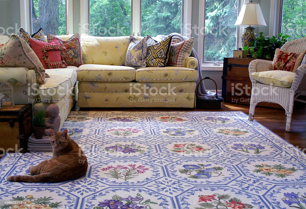 Cheery sunroom with relaxed cat royalty-free stock photo