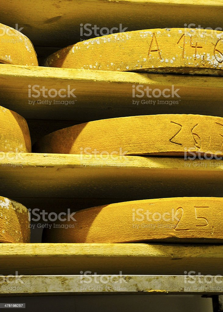 Chees Wheels stock photo