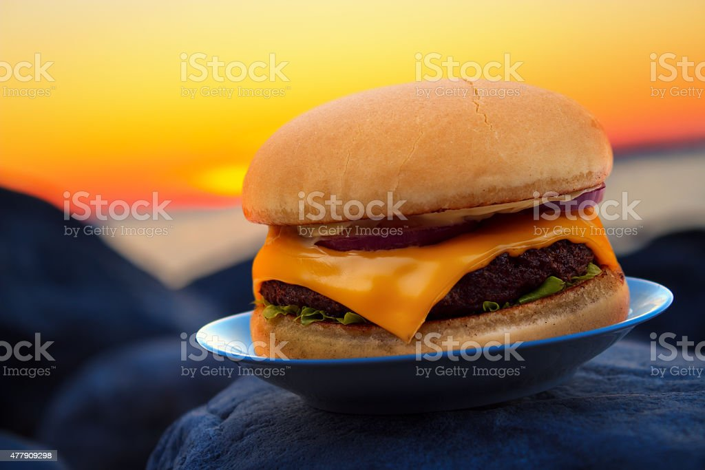 Cheese burger on plate royalty-free stock photo