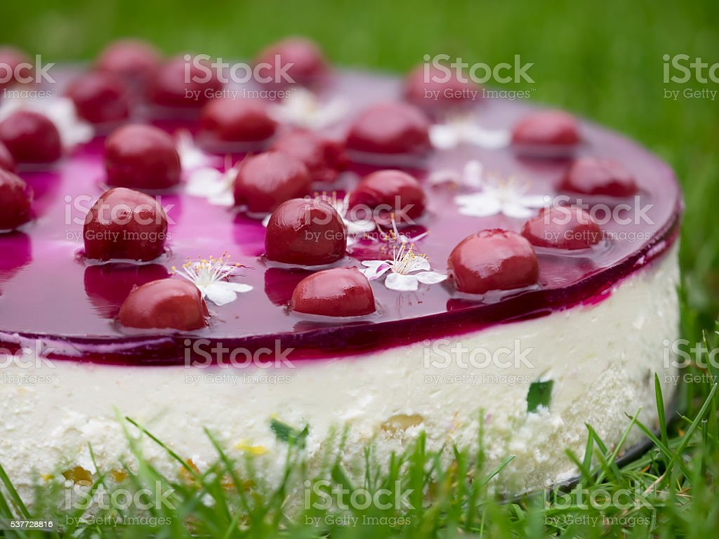 Cheese cake, decorated with flowers and cherry jelly royalty-free stock photo